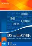 Есе за шестица. Подготовка за изпитите по английски език - Румяна Благоева - книга за учителя