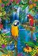 Папагали в Тропика -