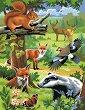 Нарисувай сам 2 картини - Животните в гората - Творчески комплект за рисуване с акрилни бои -