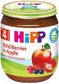 HiPP - Био пюре от горски плодове с ябълка - Бурканче от 125 g за бебета над 4 месеца -