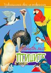 Удивителният свят на животните: Птиците -