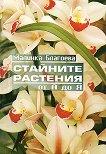 Стайните растения от А до Я - Малинка Благоева -