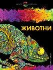 Моите цветни картини: Животни -