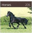 ������ �������� - Horses 2016 - ��������