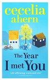 The Year I Met You - Cecelia Ahern -