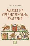 Залезът на средновековна България - Христо Матанов -
