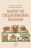 Залезът на средновековна България - Христо Матанов - книга