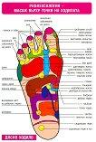 Мини табло: Рефлексология - масаж върху точки на стъпалата - сборник
