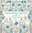 Книга за оцветяване - Биатрикс Потър - детска книга