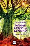 Тайният живот на дърветата - Петер Волебен -