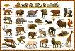 Диви животни - табло