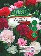 """Семена от Карамфил - Многогодишен - Опаковка от 25 g от серия """"Ивесто"""" -"""