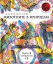 Магически свят: Животните в природата - книга