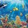 Салфетки за декупаж - Морски свят - Пакет от 20 броя -