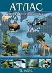 Атлас по география и икономика за 6. клас - таблица