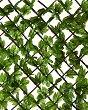 Декоративна ограда с бръшлян - Greenly - С размери 1 x 2 m -