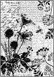 Декупажна хартия - Пчели и надписи - Формат А4 -