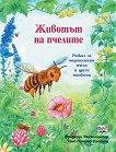 Животът на пчелите - Фридерун Райхенщетер - книга