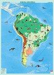 Стенна карта на Южна Америка с природни зони - M 1:8 000 000 -