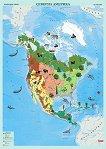 Стенна карта на Северна Америка с природни зони - M 1:9 000 000 -
