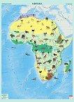 Стенна карта на Африка с природни зони - M 1:8 000 000 -