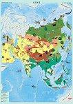 Стенна карта на Азия с природни зони - M 1:10 000 000 -
