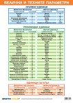 Учебно табло: Величини и техните параметри - табло