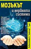 Мозъкът и нервната система -