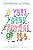 A Very Large Expanse of Sea - Tahereh Mafi -