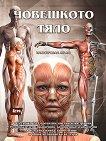 Човешкото тяло - илюстрован атлас - книга