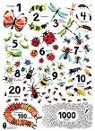 Цветен плакат: Числа с буболечки - помагало