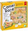Camel Race - Детска образователна игра -