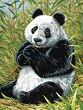 Рисуване по номера - Панда - Комплект за картина с размери 22.5 x 30.5 cm -