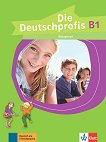 Die Deutschprofis - ниво B1: Учебна тетрадка по немски език - Olga Swerlowa -
