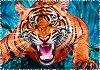 """Среща с тигър - От серията """"Crazy Shapes"""" -"""
