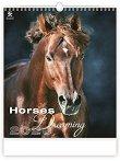Стенен календар - Horses Dreaming 2020 - календар