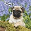 Стенен календар - Mops 2020 - книга