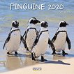 Стенен календар - Penguins 2020 -