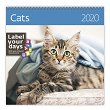 Стенен календар - Cats 2020 - календар