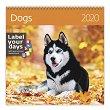 Стенен календар - Dogs 2020 - календар