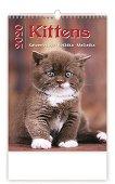 Стенен календар - Kittens 2020 -