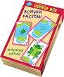 Жизнени цикли: Всички растем - Комплект карти за игра - игра