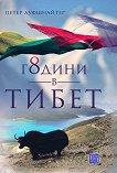 8 години в Тибет - Петер Ауфшнайтер - книга