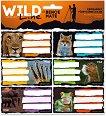 Етикети за тетрадки - Wild Life Moments - Комплект от 18 броя - книга