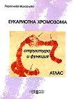 Еукариотна хромозома - структура и функция - Параскева Михайлова -
