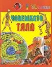 Детска енциклопедия: Човешкото тяло - детска книга