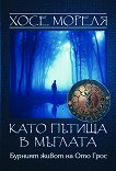 Като пътища в мъглата: Бурният живот на Ото Грос - книга