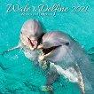 Стенен календар - Wale und Delfine 2021 - календар