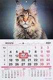Стенен календар - Котки 2021 - Формат А3 - календар
