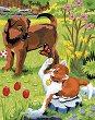 Рисуване по номера с цветни моливи - Куче и коте
